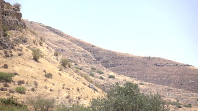 Steep Slopes of Mountain in Barren Landscape in Israel video