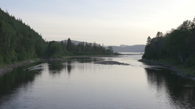 ste-marguerite river im sommer in saguenay lac saint-jean, quebec - wildnisgebiets name stock-videos und b-roll-filmmaterial
