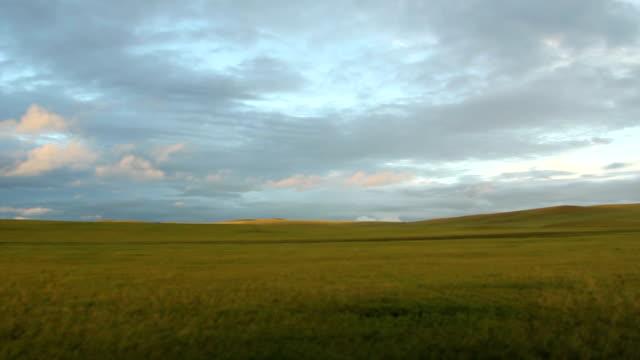 steppe video