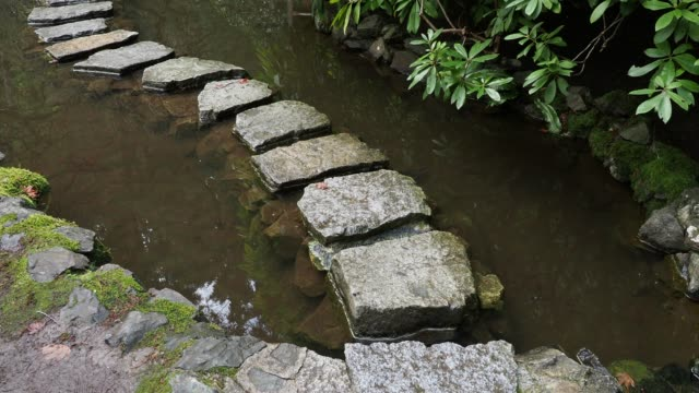 Stepping stones across the pond Stepping stones in a yin yang shape across the pond. Camera pans along the path yin yang symbol stock videos & royalty-free footage