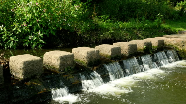 Stepping stones across the River Cole in Birmingham, England. video