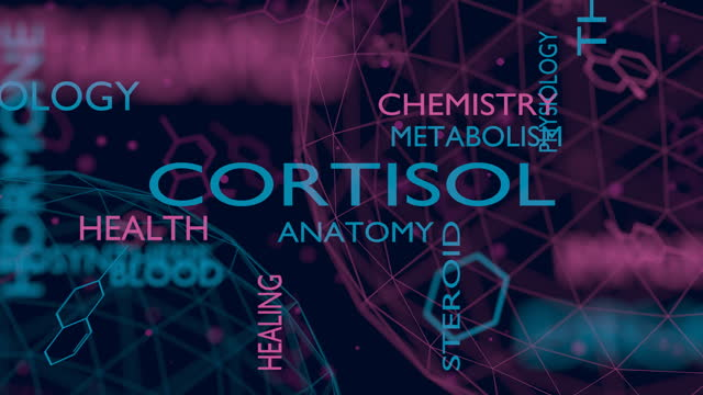 Steroid hormone cortisol Tags cloud of hormone cortisol. Words collage. hypothalamus stock videos & royalty-free footage