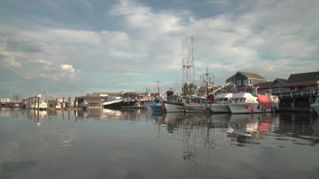 steveston harbor fisherman's wharf uhd - fiume fraser video stock e b–roll