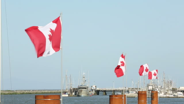 steveston harborcanada day flags - canada day stock videos & royalty-free footage