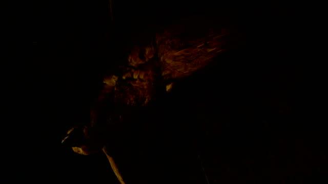 Still Life: Goose Hanging Upside Down 3 video