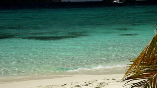 still shot of Salomon Bay Beach, St.John, US Virgin Islands video
