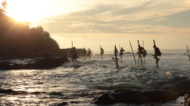 vídeos de stock e filmes b-roll de pescadores no nascer do sol sobre estacas - sri lanka