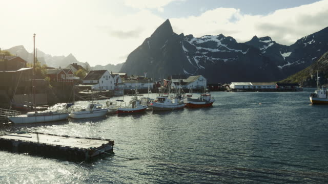 vídeos de stock e filmes b-roll de stockfish industry at reine, lofoten islands, norway - cod
