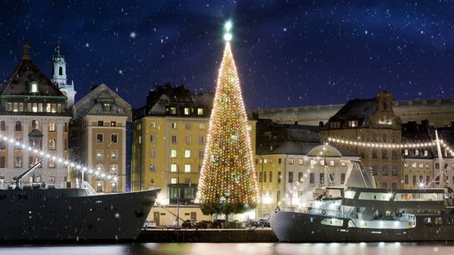 Stockholms old city with christmas tree video