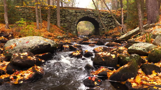 stone bridge in the quabbin watershed region of massachusetts - rivulet 4k stock videos and b-roll footage