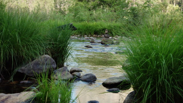 Stone Cairn in Merced River video