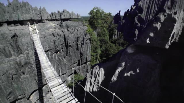 sten forest i madagaskar - madagaskar bildbanksvideor och videomaterial från bakom kulisserna
