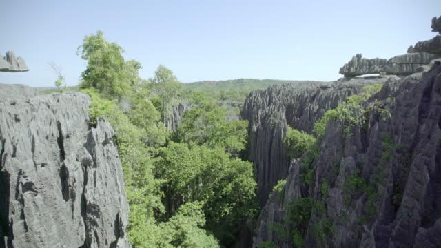 Stone forest Tsingy de Bemaraha- Stone Forest. West Madagascar madagascar stock videos & royalty-free footage