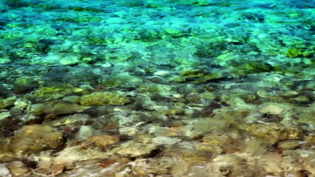 Stone in water. video