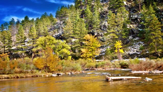 ストーン川 - アルタイ自然保護区点の映像素材/bロール