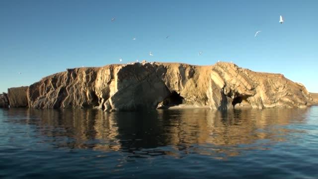 stockvideo's en b-roll-footage met stone schommelt onder het wateroppervlak van de noordelijke ijszee op de nieuwe aarde. - duurzaam toerisme