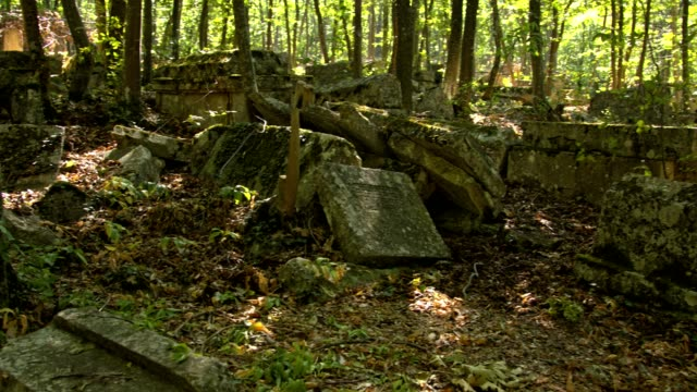 Stone slabs on an abandoned ancient cemetery. video