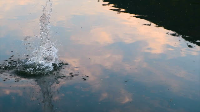 Stone thrown into the water