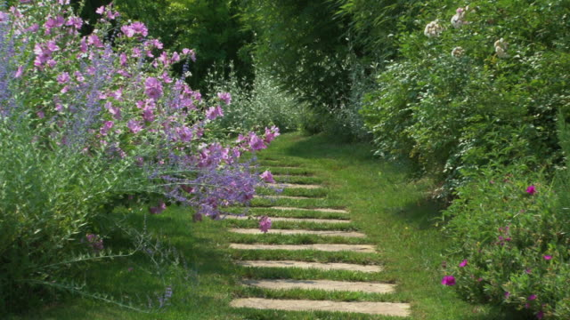 Stone walkway in a marvelous flowered botanical garden, back zoom  ornamental garden stock videos & royalty-free footage