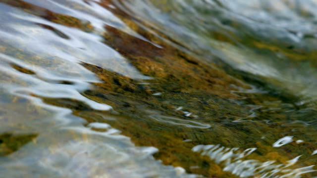 Stones in stream with smooth flowing water. video