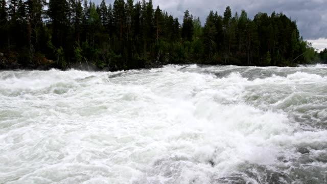 storforsen snabb i norra sverige - norrbotten bildbanksvideor och videomaterial från bakom kulisserna