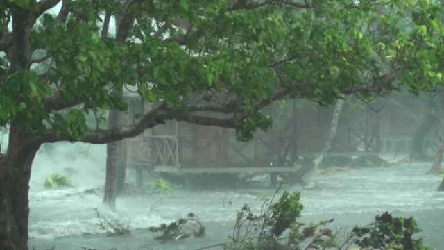 storm surge primo piano - uragano video stock e b–roll