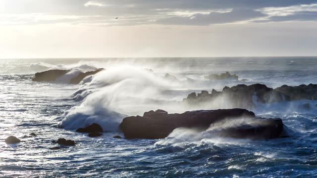 vídeos y material grabado en eventos de stock de ondas de tormenta en la costa de islandia - basalto