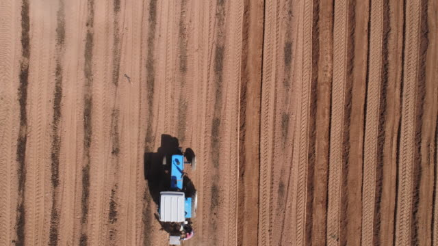 Straight down aerial view of tractor ploughing fields video
