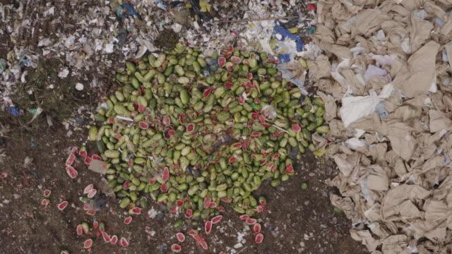 4k rakt ner antenn zoom med utsikt över fattiga människor under fattigdomsgränsen samla upp vattenmeloner som har kastats på en deponi dump plats medan världen strider livsmedelsbrist - food waste bildbanksvideor och videomaterial från bakom kulisserna