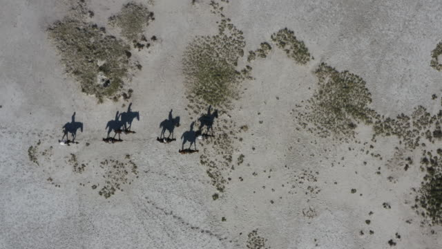 Straight down aerial zoom out view of a group of horse riders casting a shadow as they walk across the Makgadikgadi Pans,Botswana