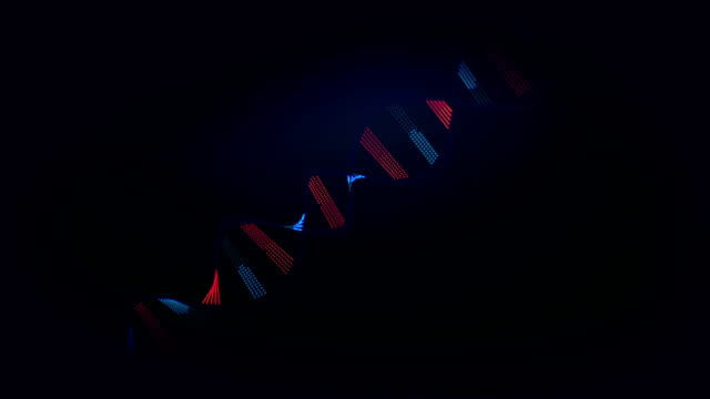 DNA strand composition. video