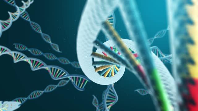 DNA strand molecule model DNA strand molecule model biochemistry stock videos & royalty-free footage