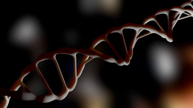 DNA. DNA strand. The camera flies around the DNA molecule. Genetic engineering scientific concept. The flying particles. Realistic background. 3D animation. video