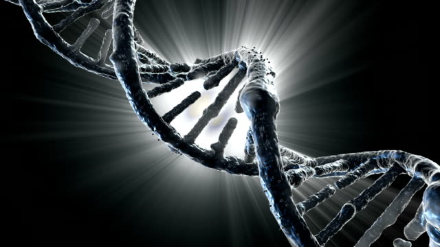 DNA strand video