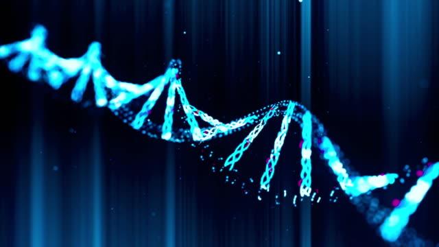 vídeos y material grabado en eventos de stock de hilos de adn girando lentamente contra un fondo bokeh efecto subacuático - cromosoma