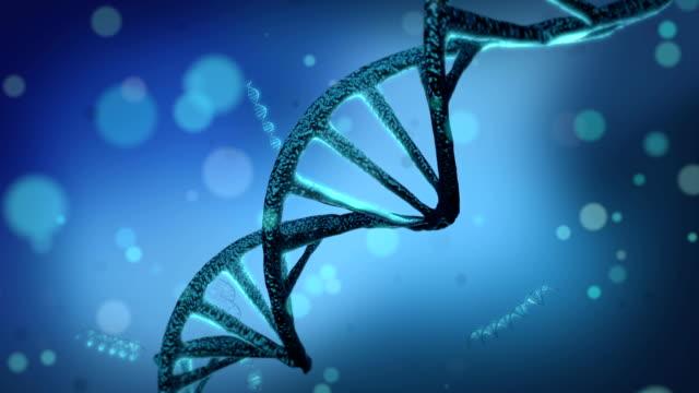 dna-stränge - genforschung stock-videos und b-roll-filmmaterial