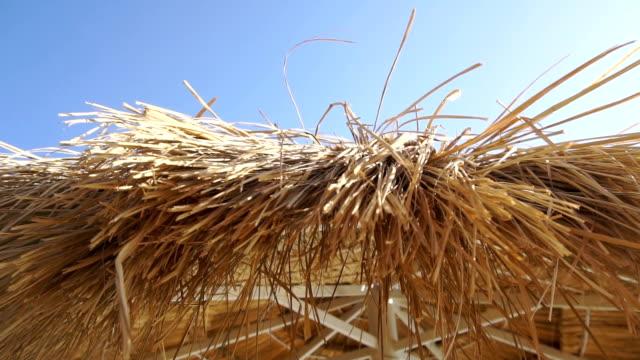 straw Sun umbrella on a bright sunny day video