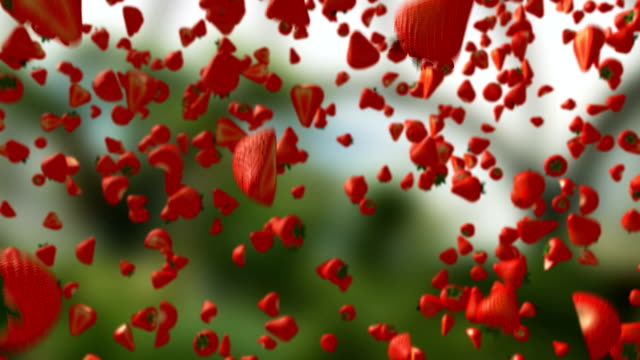 Strawberries Falling Down Alpha Matte 3D Fruits Transition Background HD video