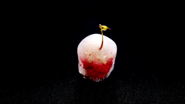 strawberry inside of melting ice cube video