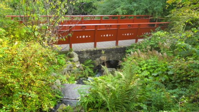 Stream and Bridge in Royal Botanic Garden of Edinburgh video
