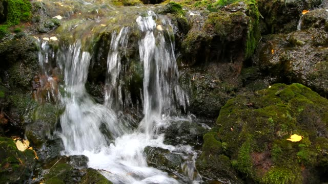 Stream and waterfall video