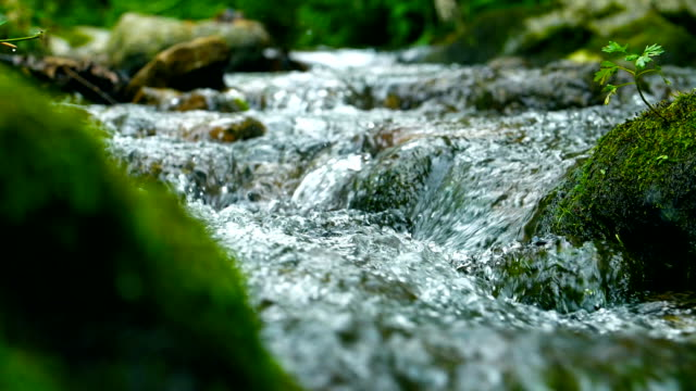 stream flowing water - pietra roccia video stock e b–roll