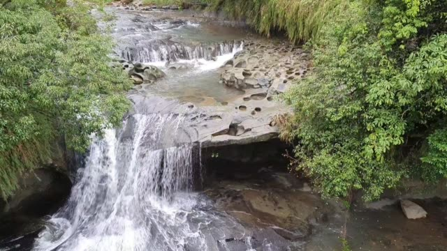 vidéos et rushes de ruisseau dans la forêt - sky