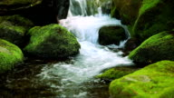 istock Stream in green forest 476308567
