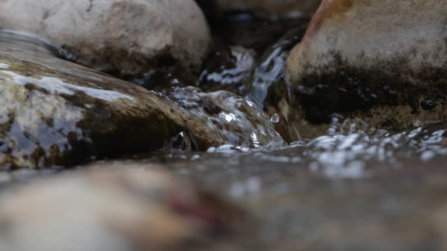 stream in red rock canyon - red rock canyon national conservation area video stock e b–roll