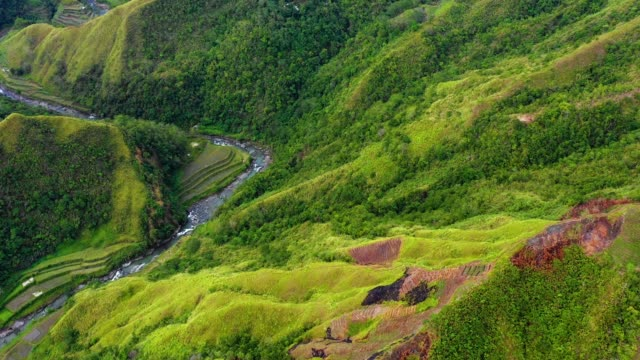 A stream in the middle of rice terraces in Philippines. Wonderful agriculture in a valley near mountains in a beautiful day - Aerial view with a drone 4K Banaue's rice terraces with a stream or a small river in nature. One of the most beautiful agriculture in Philippines, with the most wonderful view.  Perfect landscape in an amazing place, with the respect of environment banaue stock videos & royalty-free footage
