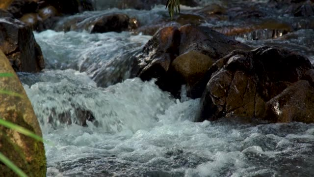 Stream water in rapid river in mountain close up. Water stream quickly flowing downhill in rocky river. Wild water stream creating bubbling foam