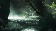 istock Stream with mist and sun rays -  HD720, NTSC, PAL 103274006