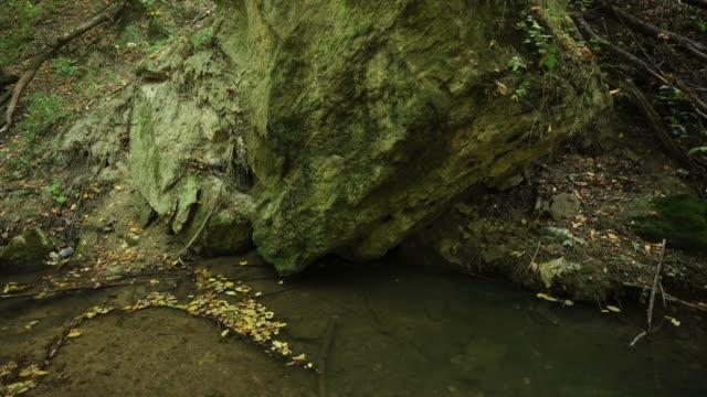 потоковая вода в ручье bechir's около сороки, молдова - молдавия стоковые видео и кадры b-roll