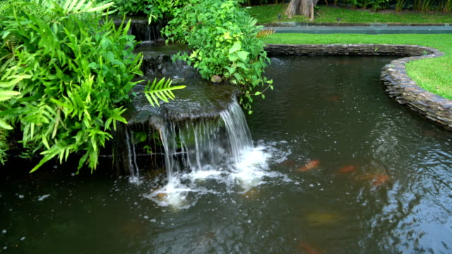 Streams of garden waterfall water in pond with koi fish carp and lush plants. Outdoor park